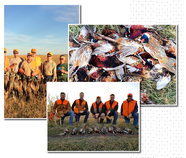 Hunt Upland in ND